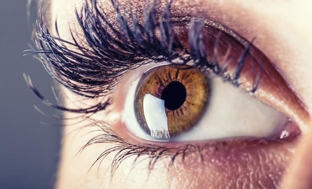 Gros plan sur l'oeil de la femme. macro bel oeil féminin.