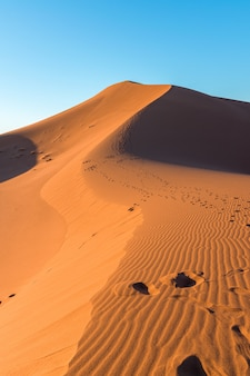 Gros plan des ondulations de sable et des pistes sur les dunes de sable dans un désert contre le ciel bleu clair