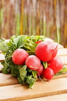 Gros plan d'un paquet de radis rouge frais sur une surface en bois
