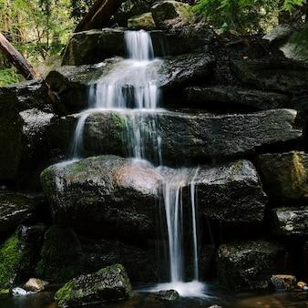 Gros plan d'une petite cascade sur les pierres dans la forêt