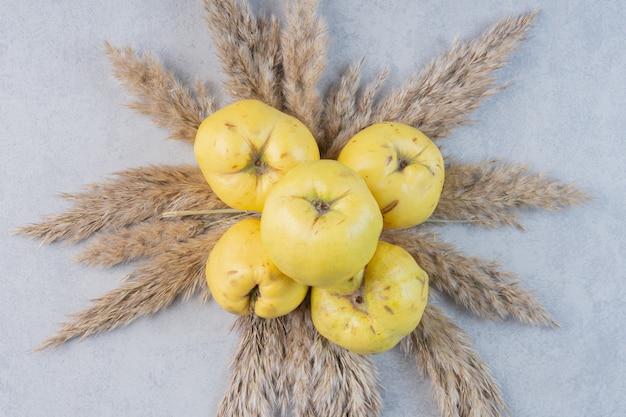 Gros plan photo de coing pomme sur fond gris.