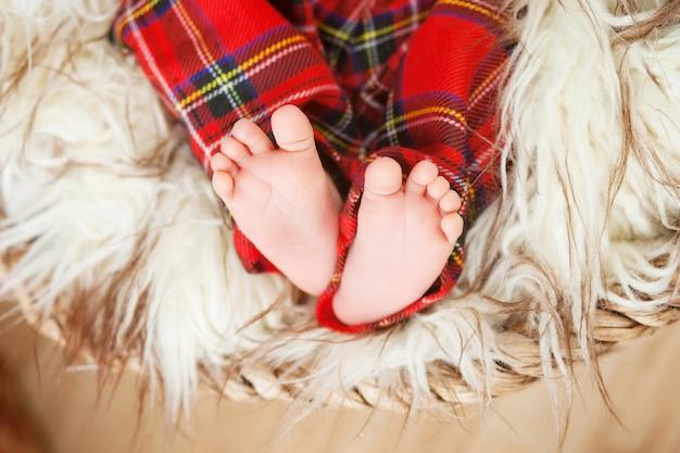 Gros plan photo des pieds de bébé nouveau-né sur la fourrure dans un panier caronculé. fokus doux