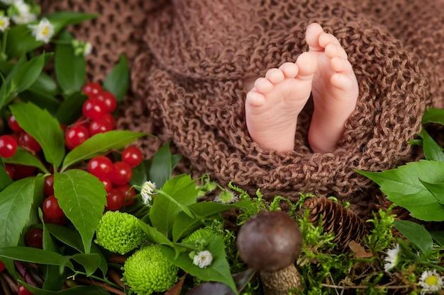 Gros plan photo de pieds de bébé nouveau-né sur plaid tricoté et fleurs, baies, champignons