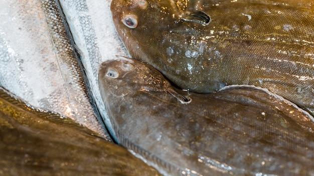 Gros plan, de, pile poisson frais