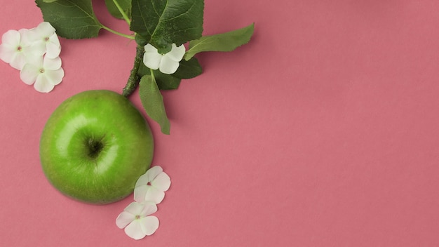 Gros plan sur une pomme verte entourée de fleurs blanches blanches sur fond rose