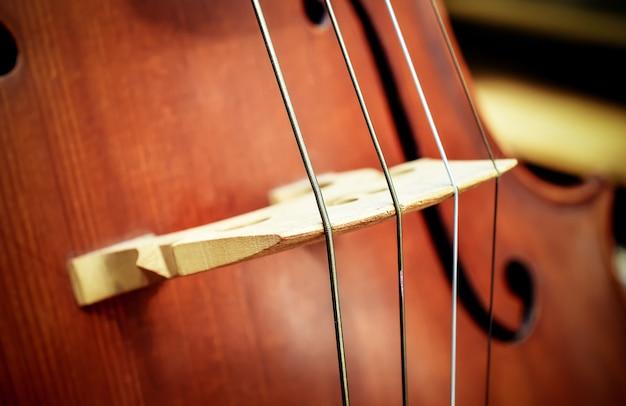 Gros plan de quatre cordes sur un violoncelle.