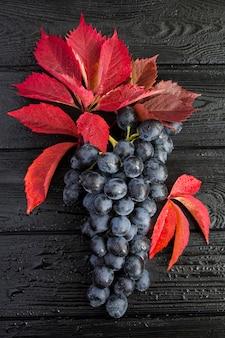 Gros plan sur les raisins bleus et les feuilles rouges sur le fond en bois noir humide. fond d'automne.