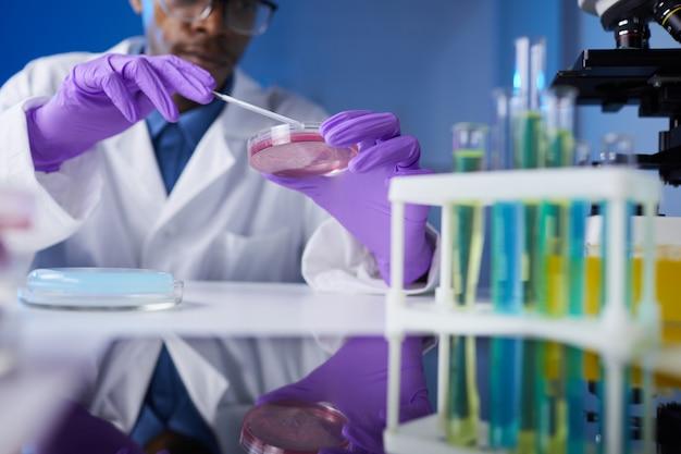 Gros plan sur la recherche en laboratoire