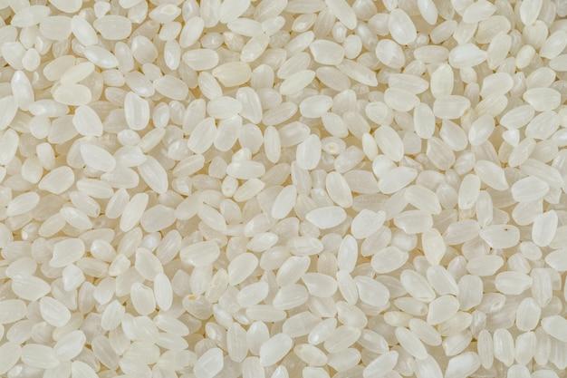 Gros plan de riz rond non cuit.