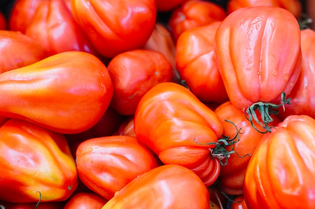 Gros plan, rouge, tomates anciennes