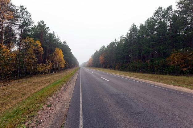 Gros plan sur la route d'automne
