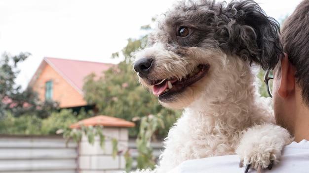 Gros plan, smiley, chien, dehors