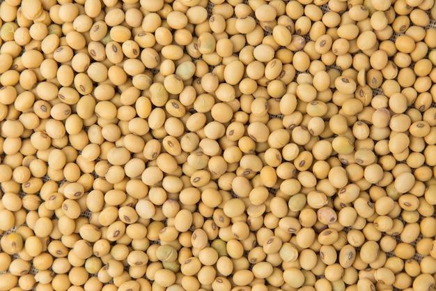 Gros plan de soja pour le fond