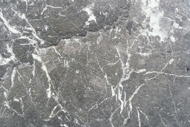 Gros plan d'un sol en pierre avec plusieurs motifs de blanc éparpillés autour d'elle