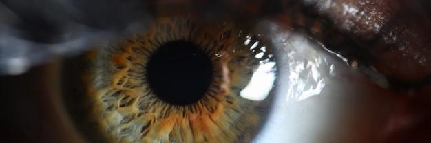 Gros plan supermacro rétine oeil vert humain. vérifier le concept de vision