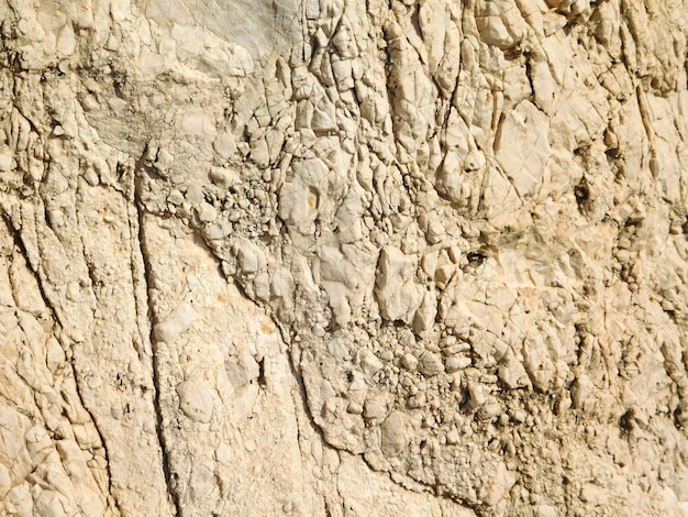 Gros plan de la surface rocheuse