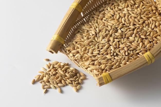 Gros plan d'un tas de grains d'avoine