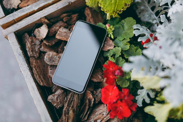 Gros plan sur un téléphone portable avec un écran vide vierge sur des morceaux de fleurs rouges en bois marron