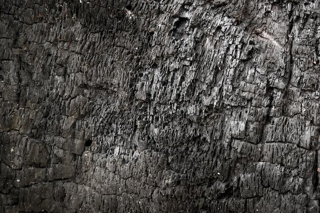 Gros plan de la texture du bois brûlé