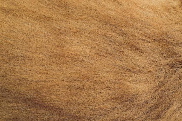 Gros plan d'une texture de fourrure de couleur animale.