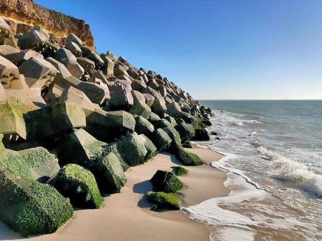 Gros plan sur des vagues de mousse frappant un bord de mer sablonneux avec des rochers couverts de mousse
