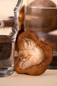 Gros plan des verres à eau et des champignons