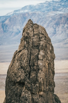 Gros plan vertical sur un petit rocher brun