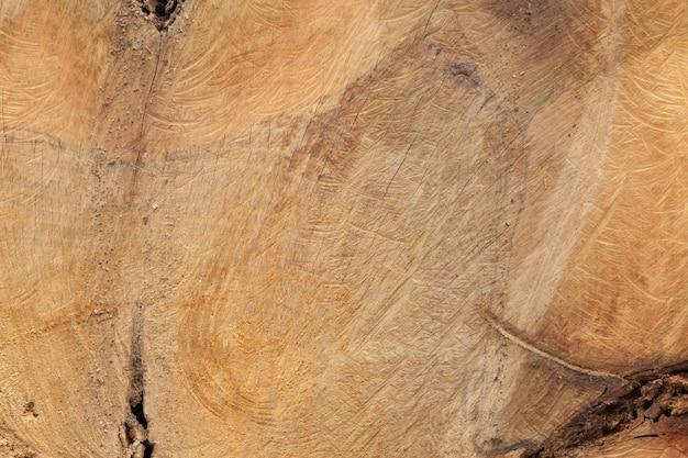 Gros plan, vieux, bois, coupé, texture