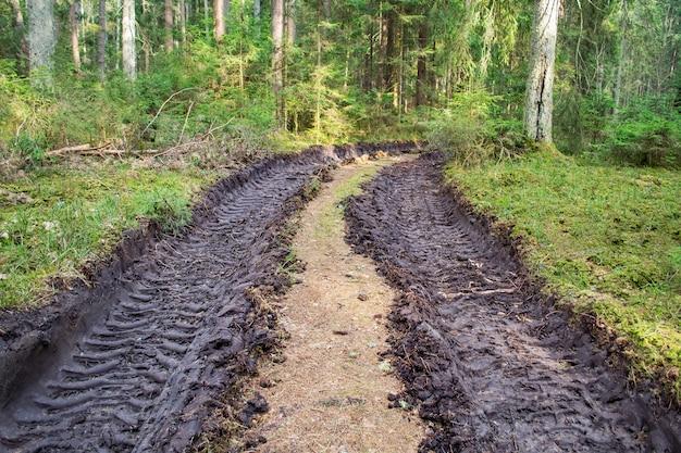 Gros pneu imprimé au sol. traces gravées de pneus de tracteur ou de bulldozer dans la grande boue. déforestation et exploitation forestière, défrichement, enlèvement de bois. impact humain sur l'environnement.