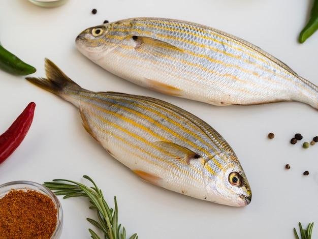 Gros poissons crus au romarin