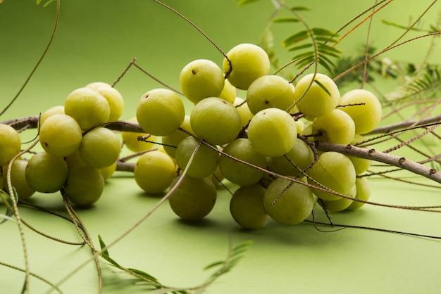 Groseille à maquereau indienne ou fruit d'amla ou phyllanthus emblica, mise au point sélective