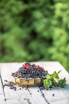 Groseille noire et rouge dans un bol en bronze sur table de jardin.