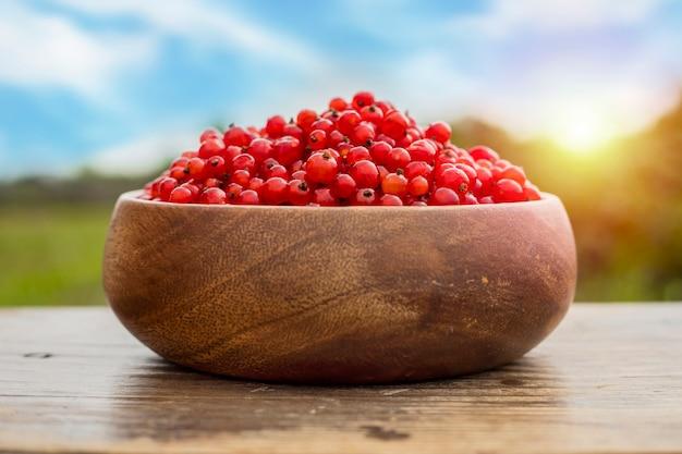 Groseille rouge mûre dans une assiette en bois sur une table dans le jardin. lumière du soleil