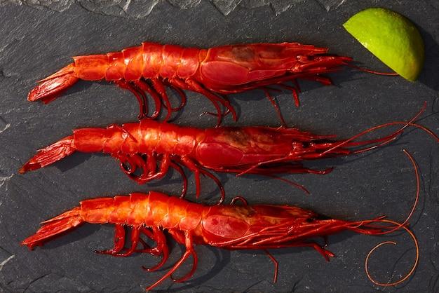 Grosses crevettes rouges fraîches sur la glace sur une vue de dessus de table en pierre noire