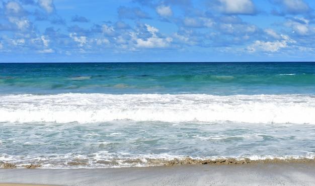 De grosses vagues frappent le rivage