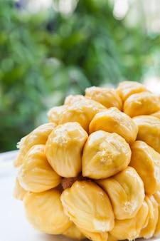 Groupe d'arilles de chempedak frais, un fruit originaire de la région de l'asie du sud-est.