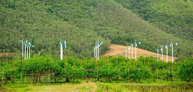 Groupe d'éoliennes blanches avec jardin fruitier en premier plan