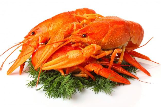 Groupe de homards rouges avec garniture isolée