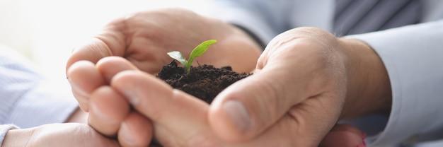 Groupe d'hommes d'affaires tenant la terre avec une petite plante verte dans leurs mains en gros plan