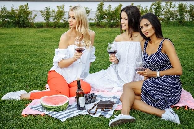 Groupe de joyeux jeunes amis en vacances en dégustant du vin au pique-nique.