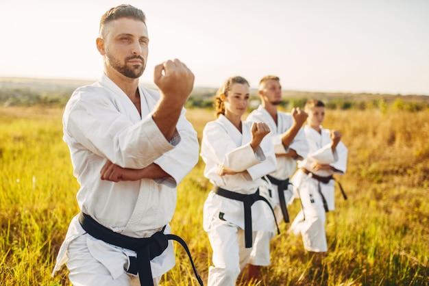 Groupe de karaté sur la formation en champ d'été. entraînement d'arts martiaux en plein air, pratique de la technique