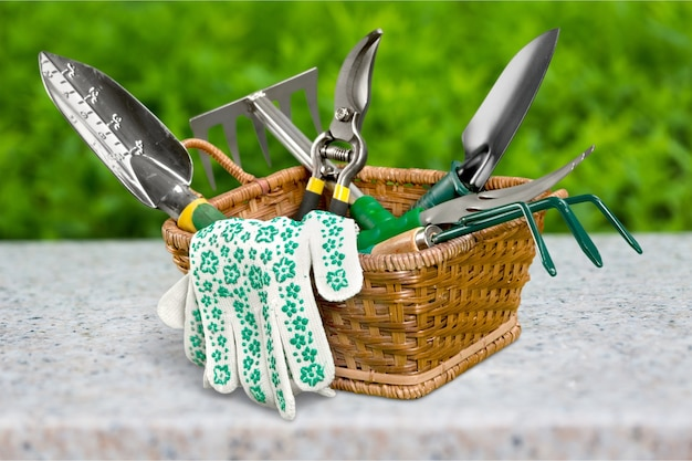 Groupe d'outils de jardinage sur fond