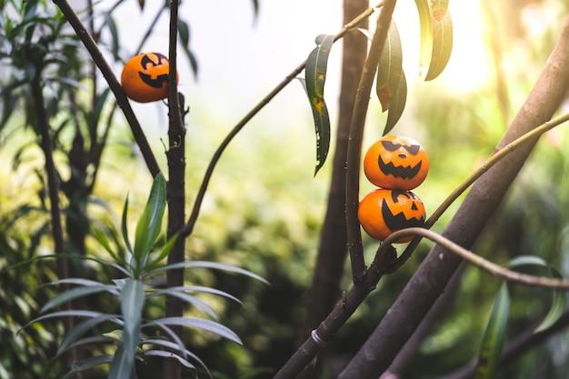 Groupe de peintures pour le visage oranges avec effrayant le jour de la fête d'halloween à la branche.