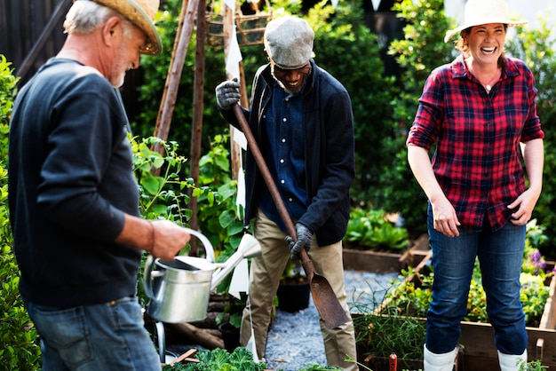 Groupe de personnes plantant des légumes en serre