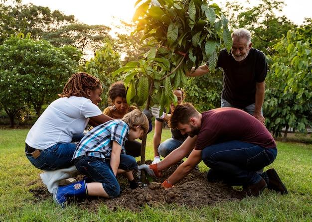 Groupe de personnes planter un arbre ensemble à l'extérieur