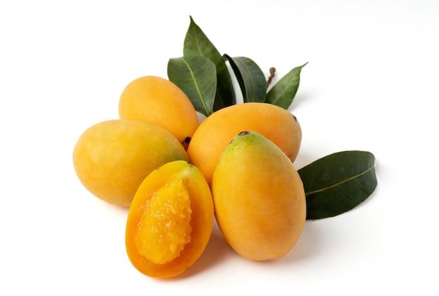 Groupe de prune mariale jaune doux isolé sur fond blanc.