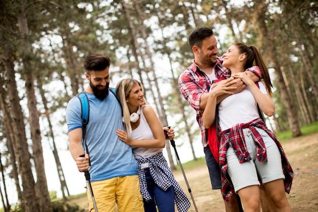 Groupe de quatre amis en randonnée ensemble à travers une forêt