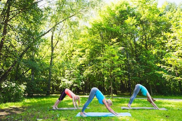 Groupe de remise en forme, faire du yoga dans le parc par une journée ensoleillée