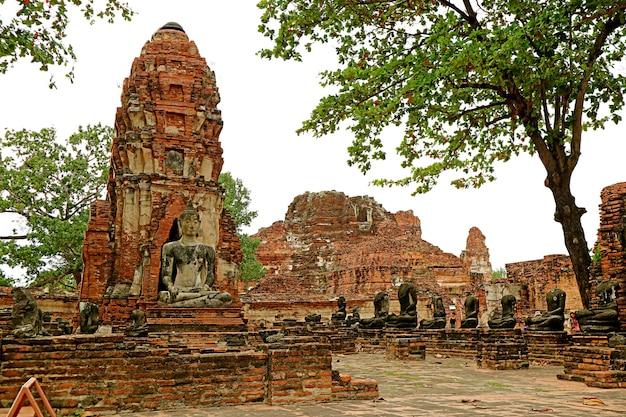 Groupe de ruines d'image de bouddha dans le temple wat mahathat parc historique d'ayutthaya, thaïlande