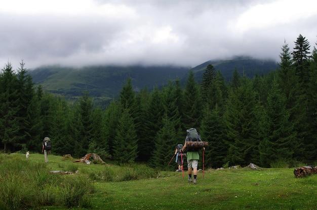 Un groupe de touristes dans les montagnes lors d'un voyage de marche nordique en été